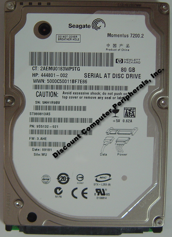 Seagate ST980813AS